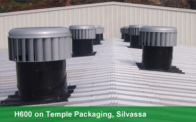 H600 on Temple Packaging, Silvassa